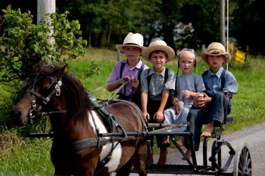 Bambini Amish su un carretto